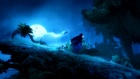 Ori and the Blind Forest Test 03